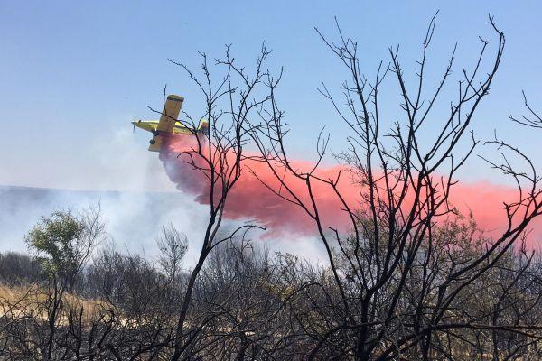 מסתמן: שריפת החורש ליד יערה – כתוצאה מהצתה