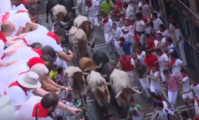 """ספרד: 53 פצועים ב""""ריצת השוורים"""" המסורתית"""