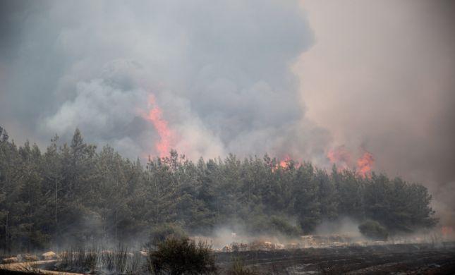 רגיעה בשריפות: 15 מבנים נפגעו, 7 פצועים
