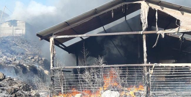 יצהר: ערבים הציתו שריפה, ארבעה מבנים עלו באש