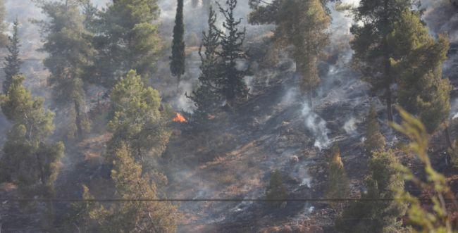 שריפות בעוטף ירושלים: היישוב בית מאיר פונה