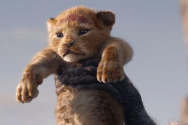 ענק: כשהלהיט של 'מלך האריות' הפך לשיר חופות
