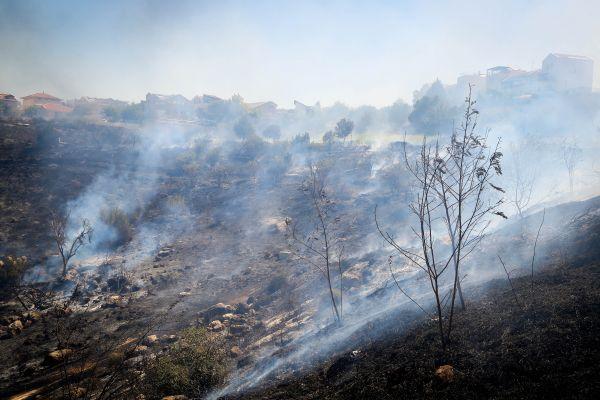 שריפה ביער בית שמש: הכנות לפינוי קיבוץ נחשון