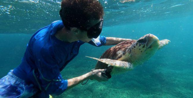 מדהים! לא תאמינו מה מסתתר בקרקעית הים התיכון