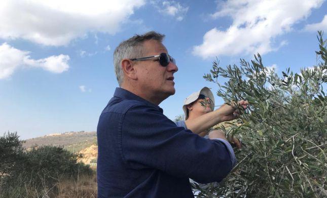 ניצן הורביץ הגיע למסוק זיתים עם פלסטינים