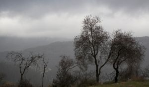 חדשות, חדשות בארץ, מבזקים נאה, קר מאוד ובלי גשם: תחזית מזג האוויר