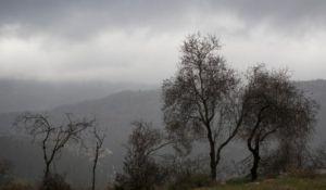 חדשות, חדשות בארץ, מבזקים הגשמים יתחזקו, סיכוי לשלג: תחזית מזג האוויר