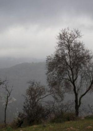 הגשמים יתחזקו, סיכוי לשלג: תחזית מזג האוויר