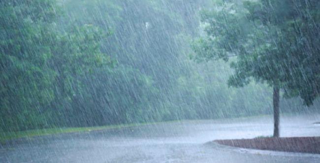 למה יום הגשמים גדול כיום תחיית המתים?