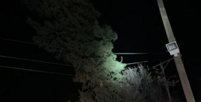 נזקי מזג האוויר: עצים קרסו על מכוניות; קווי מתח נקרעו