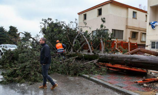 נזקי מזג האוויר: המדריך המלא לנפגעי הסערה