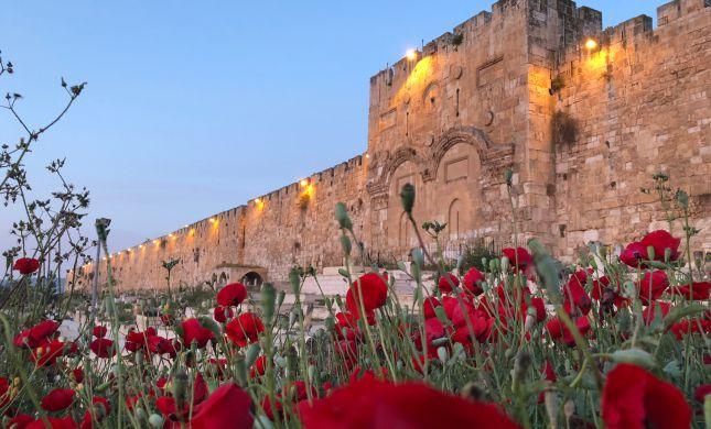 אוויר הרים צלול | בירושלים יאסרו כניסת רכבים מזהמים