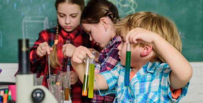 חינוך למדעים בדור צעיר - משאב לאומי