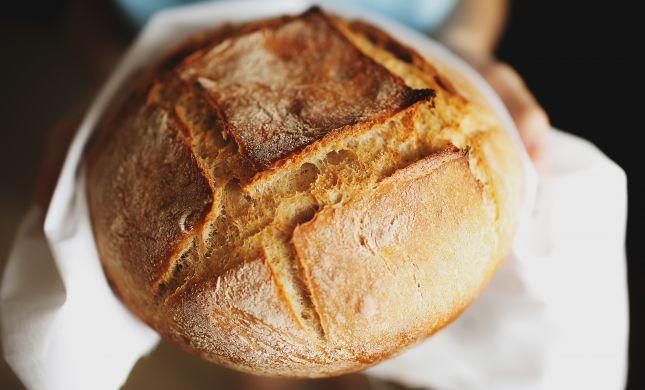 חלה, מאחוריך: מתכון ללחם חלומי שתשמחו לאמץ השבת