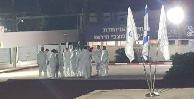 הישראלים מספינת הקורונה נחתו בישראל
