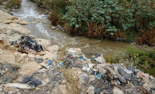 בל תשליך: היהדות צריכה לפתח 'הלכות איכות סביבה'