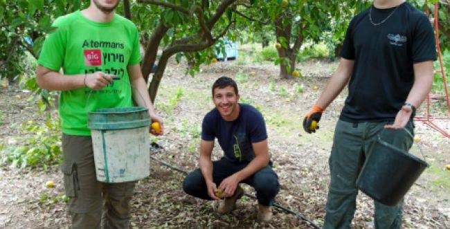 שר החינוך הפציר: אלפים הצטרפו להתנדבות, קחו חלק
