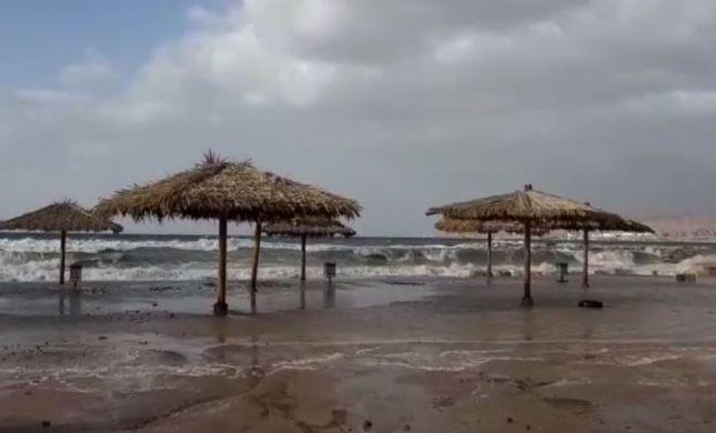 מטורף: חופי אילת הוצפו; העץ המפורסם קרס