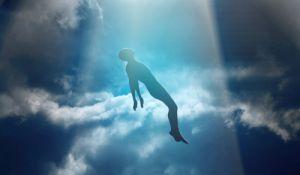 יהדות, פרשת שבוע לא רק קרבנות: ספר ויקרא- סיפורה של הנפש האנושית
