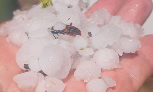 צפו: ברד כבד בדרום; מאות ברקים פגעו בשטח ישראל