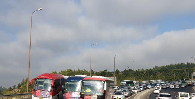 עשרות אוטובוסים חוסמים את כביש 1