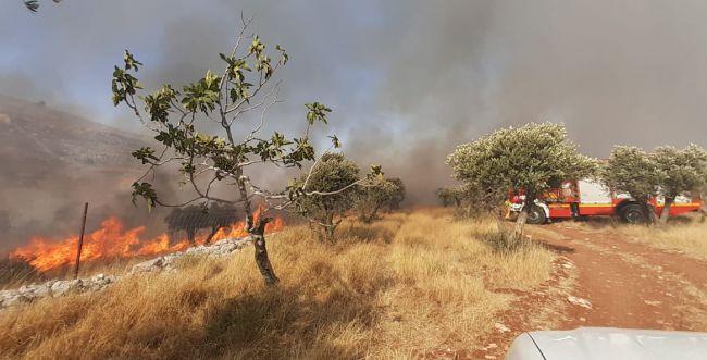 שריפה ענקית סמוך לגבעת רונן; העלייה ליישוב נחסמה