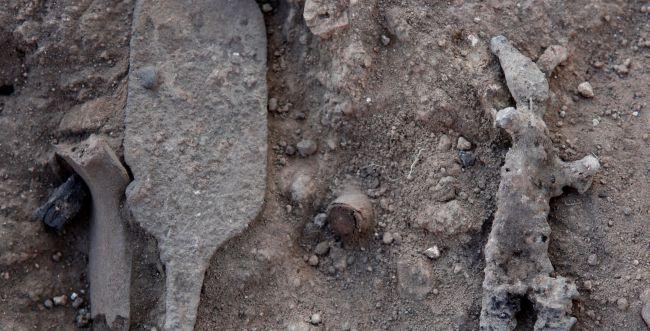 תעלומה: מה מסמל העיטור שנמצא במקדש הכנעני