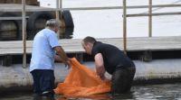 חדשות המגזר, חדשות קורה עכשיו במגזר, מבזקים בן 9 מהיישוב תפוח טבע למוות בנהר ברוסיה