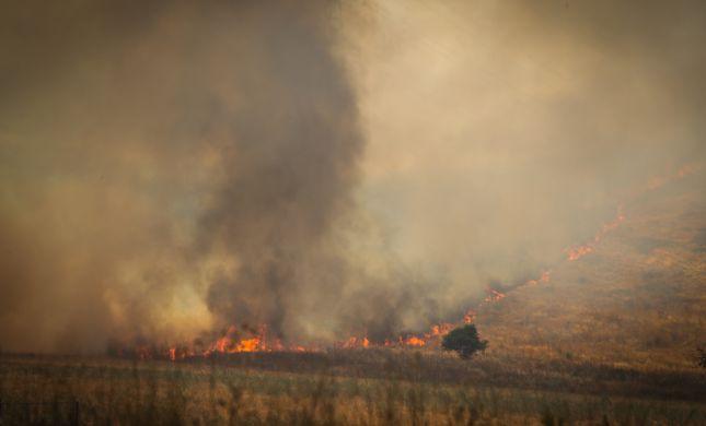 """בחודש וחצי: עשרות שריפות ביו""""ש הוגדרו כהצתות טרור"""