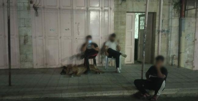 כלב תקיפה שוחרר לעבר תושבת חברון, אין עצורים