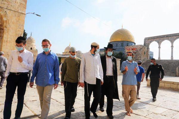 135 רבנים חתמו מחדש: לא לעליית יהודים אל הר הבית
