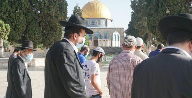 השגרירים של עם ישראל בפעילות למען בניין הבית