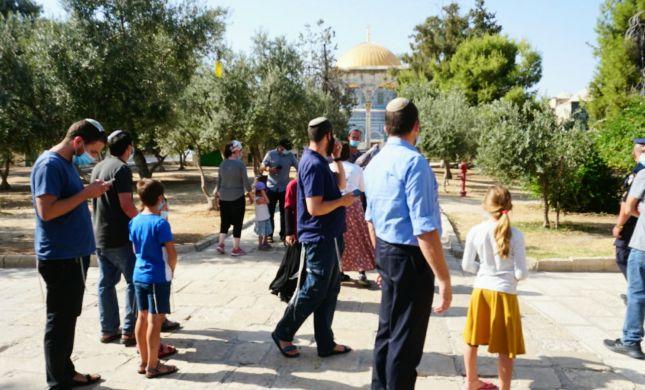עתירה: לקבוע מתי יהודים יוכלו להתפלל בהר הבית