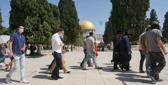 מאות יהודים עולים להר הבית,חשש ממהומות בכותל