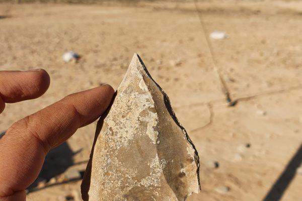 האדם שיצא מאפריקה לפני 100,000 שנה עבר בדימונה