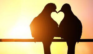 """זוגיות, סרוגות לא רק ט""""ו באב: כל יום הוא יום לאהבה"""
