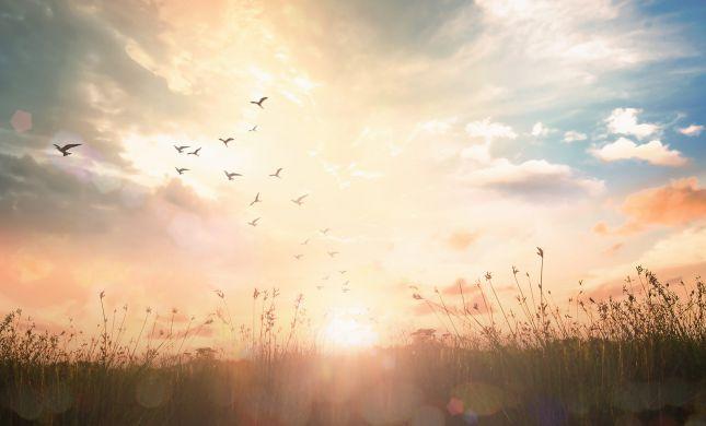 פנימיות בקטנה: איך לקבל קדושה גבוהה יותר?