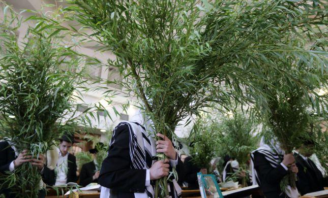 הדרך של עיריית ירושלים למכירת ערבות בזמן קורונה