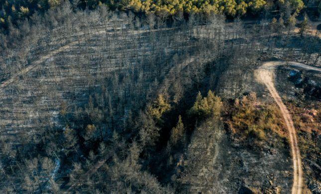 שריפת ענק בגליל: 4,000 דונם של חורש עלו באש