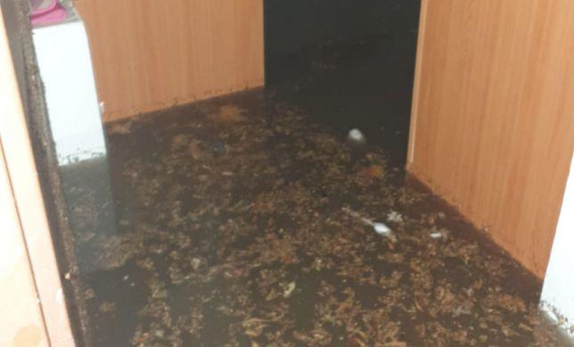 נזקי מזג האוויר: משפחה נלכדה בביתה בגבעת זאב