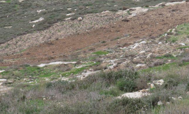 ביקורת חריפה על המחטף הערבי ליד גבעת קומי אורי