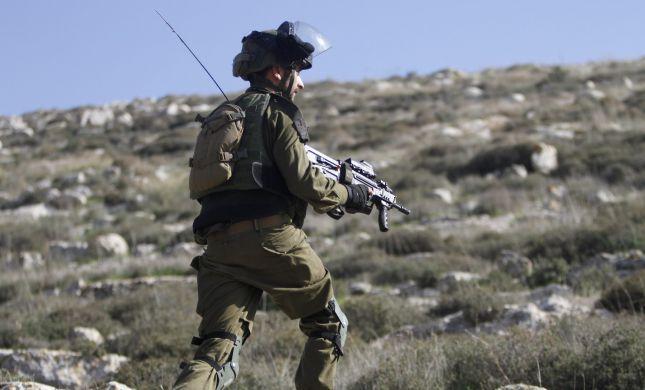 """הרשות הפלסטינית נטעה עצים בשטחי אש של צה""""ל"""