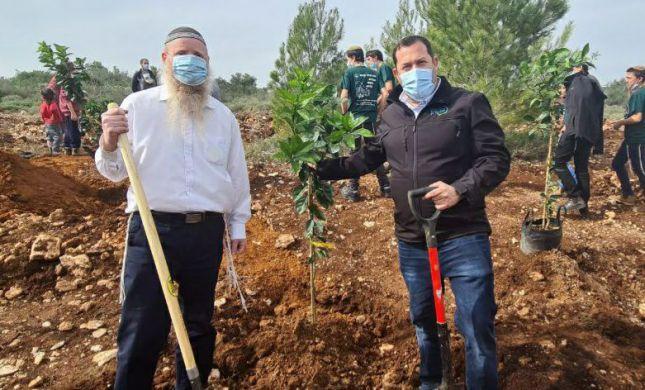"""טו"""" בשבט: 100 עצים נטעו לזכרה של רנה שנרב"""