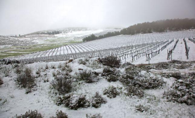 גשום וסוער; שלג בירושלים ובנגב: תחזית מזג אוויר
