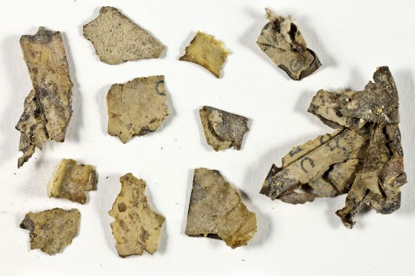 עשרות קטעי מגילה מימי בר כוכבא נחשפו במדבר יהודה