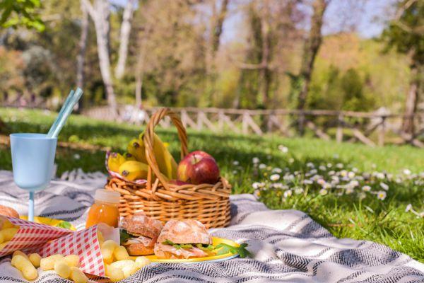 לבחור נכון: 15 מתכונים לפיקניק משפחתי בטבע