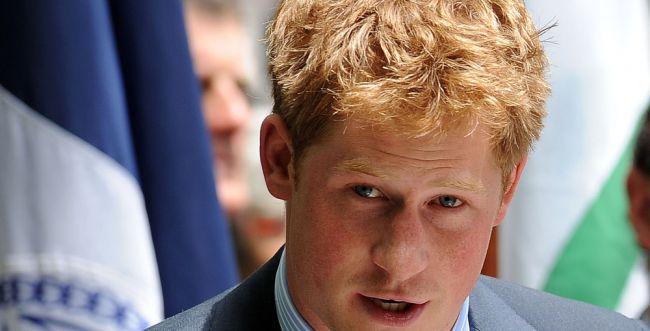 לא מובטל: הנסיך הארי מתחיל עבודה כשכיר