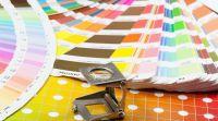 עיצוב ולייף סטייל, צרכנות קריאה במניפה: כך תבחרו את הצבע הנכון לקיר