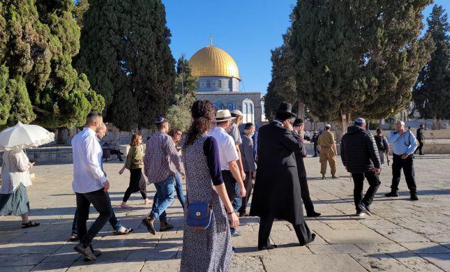 """ירדן: """"עליית יהודים להר הבית - הפרת הסטטוס קוו"""""""