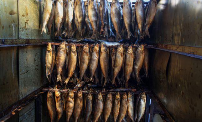 מחקר: יהודים בבית הראשון נהגו לאכול דגים לא כשרים